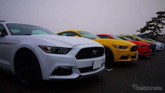 マスタング50Years Edition限定生産カラー含め6台が登場