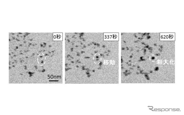 白金微粒子挙動の観察結果