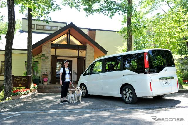 ホンダ ステップワゴンと愛犬の旅。初夏の那須をめざした。写真はフォレストヒルズ那須に到着したところ《撮影 雪岡 直樹》