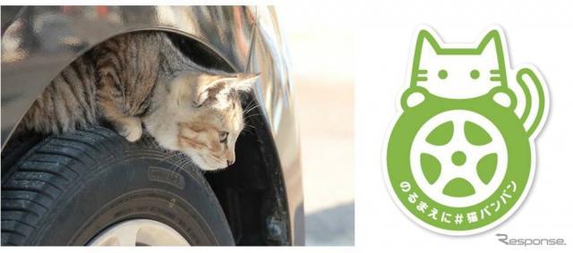 日産 #猫バンバンプロジェクト