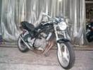 スズキ Bandit250の画像