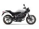 ホンダ VTR250 最新モデル 2年間メーカー保証付き タイプLDの画像