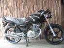 スズキ EN125ー2A 最新モデルの画像