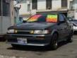 トヨタ カローラレビン GT APEX 2ドア ワンオーナー車 新車時整備手帳有