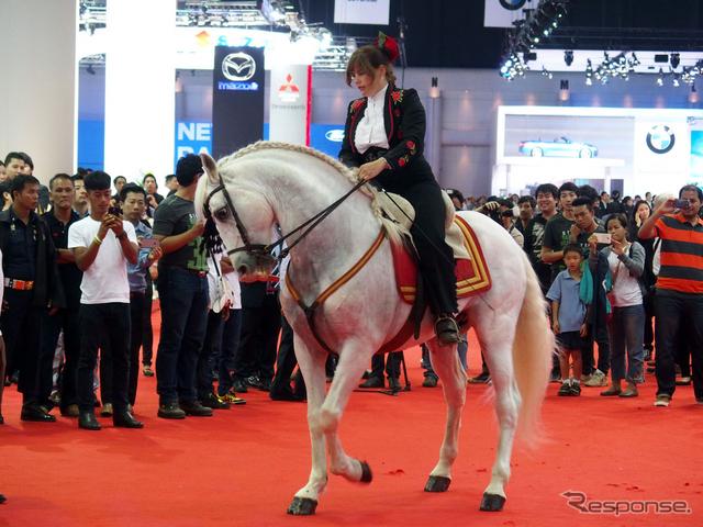 ショー会場に突如現れた白馬。華麗なステップで来場者を魅了した《撮影 会田肇》