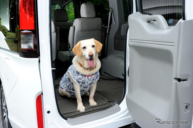 「犬用のドアにしてもいいわん」とマリアもお気に入りの ステップワゴンのサブドア《撮影 雪岡直樹》