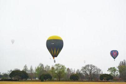 荒天に飛んだ色とりどりのバルーン、白熱の競技…熱気球ホンダグランプリ