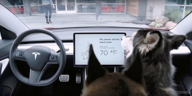 テスラ・モデル3に採用された「ドッグモード」(動画キャプチャ)