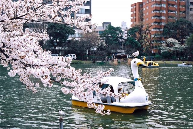 上野恩賜公園(東京都) (AC)