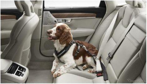 ボルボ、犬用シートベルトなどを出展…インターペット2019