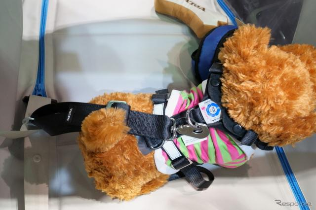 犬用シートベルト「ドッグハーネス」《撮影 石川徹》