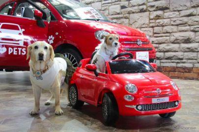 【青山尚暉のわんダフルカーライフ】インターペット2019、愛犬との暮らしに欠かせない自動車メーカーのブース