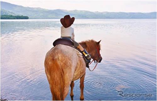 馬とふれあいホーストレッキング