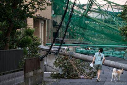 台風15号、車両保険の支払総額は160億円超…日本損害保険協会発表