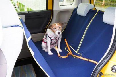【青山尚暉のわんダフルカーライフ】道路交通法違反にならないために! 正しい愛犬の乗せ方