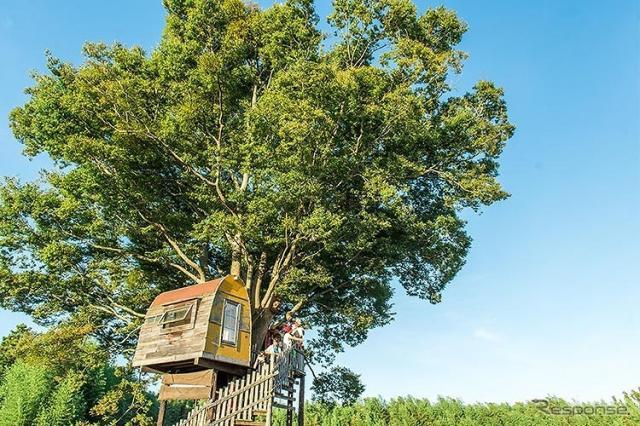 一番星ヴィレッジ 市原オートキャンプ場(イメージ)《写真提供 ルノー・ジャポン》
