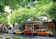 ルノー カングー、色彩豊かな5色の限定車「パナシェ」発売