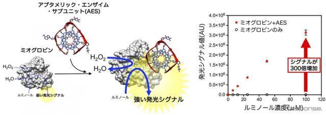 運転中の心筋梗塞、予兆を早期検知…デンソーなどDNAの機能を発見