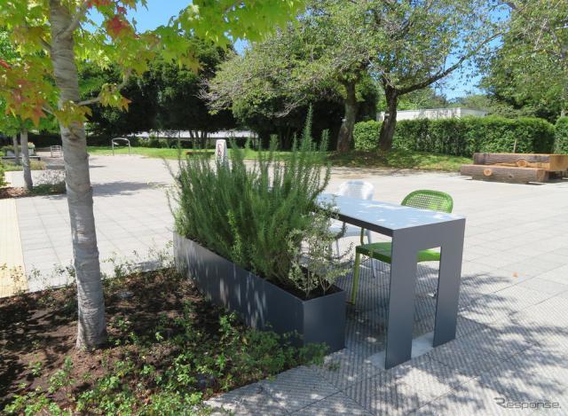 休憩するテーブルの前にも植物があり、休みながら緑を満喫。《写真撮影 岩貞るみこ》