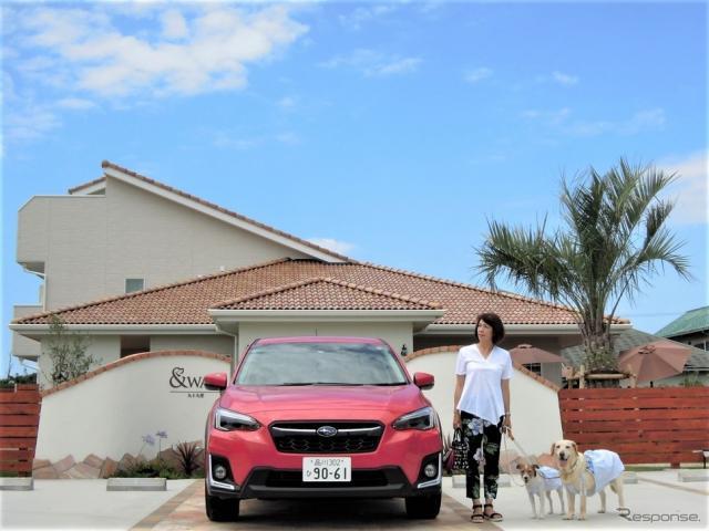 犬の大きさ&乗車人数別、クルマの乗せ方《写真 青山尚暉》