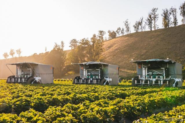 イチゴ収穫ロボット「TX ロボティック ストロベリー ハーベスター」《写真提供 ヤマハ発動機》