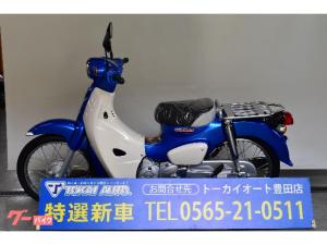 ホンダ/スーパーカブ110 キャリア付 ヘルメットロック付き