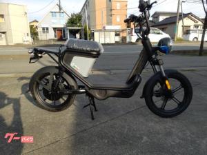 電動スクーター/電動スクーターGEV600ゴッチア