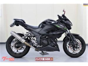 カワサキ/Z250 2013年モデル WR'Sマフラー