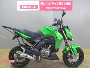 カワサキ/Z125PRO 2016年モデル SP忠男フルエキマフラー タケガワミラーカスタム Rキャリア メットホルダー アンダーカウル装備