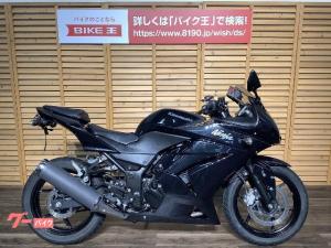 カワサキ/Ninja 250R スマホホルダー/タンクパッド付き/フェンダーレス化/ノーマルサイレンサー