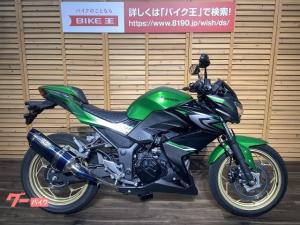 カワサキ/Z250 スペシャルエディション/2017年モデル/ABS/BEETナサートマフラー/純正キー2本/ノーマルマフラー付属