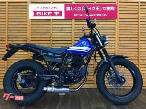 ヤマハ/TW225E ビームスマフラー装備
