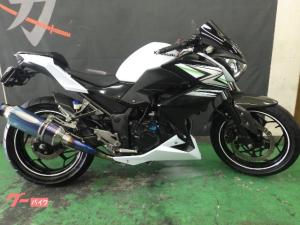 カワサキ/Z250 ETC付