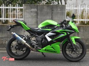 カワサキ/Ninja 250SL x リアライズ