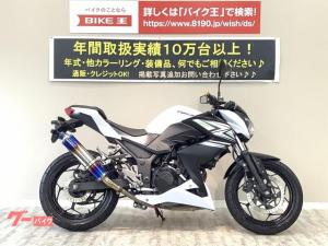 カワサキ/Z250 2014年モデル マルチバー装備 BEAMSマフラー バーエンド