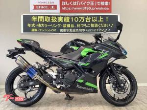 カワサキ/Ninja 400 ABS ワンオーナー WR'Sマフラー EX400G型 2019年モデル