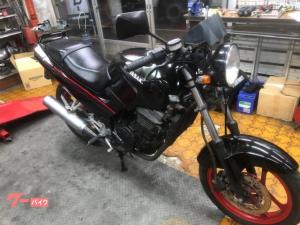 カワサキ/GPX250R 45馬力