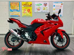 カワサキ/Ninja 250R カスタム