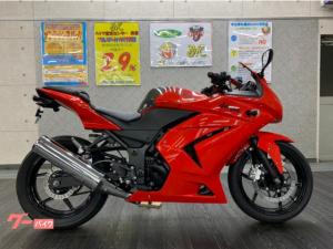 カワサキ/Ninja 250R フェンダーレス
