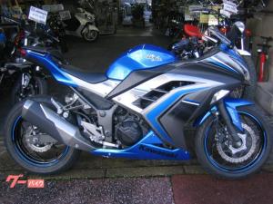 カワサキ/Ninja 250 ABS スペシャルエディション ETC