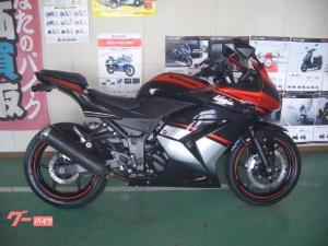 カワサキ/Ninja 250R  スペシャルエディション