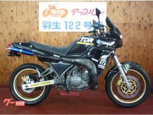 ヤマハ/TDR250 ブラックカラー CATHOUSEサイレンサー