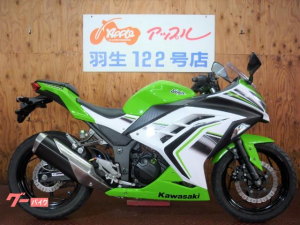 カワサキ/Ninja 250 ライムグリーンII