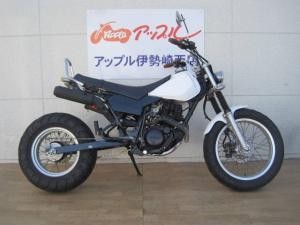 ヤマハ/TW200E ロンスイカスタム