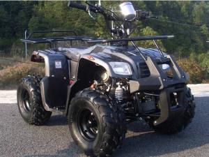 バギー/四輪バギー ATV ICEBEAR