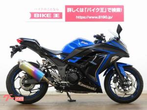 カワサキ/Ninja 250 スペシャルエディション モリワキマフラー装備