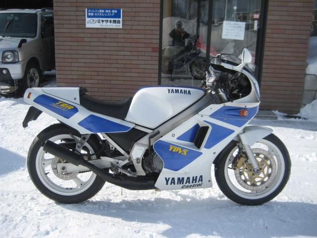 ヤマハ TZR250 2XTの画像(北海道