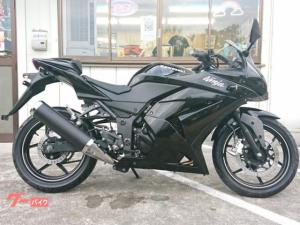 カワサキ/Ninja 250R オールペン車輛 シングルシートカウル