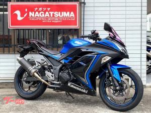 カワサキ/Ninja 250 2015年モデル・ドレスアップパーツ多数
