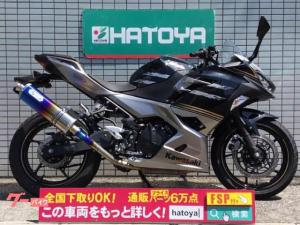 カワサキ/Ninja 250 モデル年式2019年 ノジマチタンサイレンサー ワンオーナー